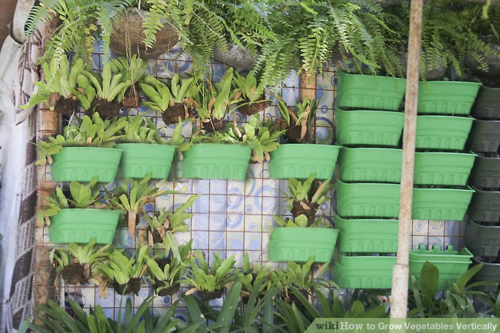 8 Impressive Ways to Growing more in Your Garden Space - Grow vertically.jpg