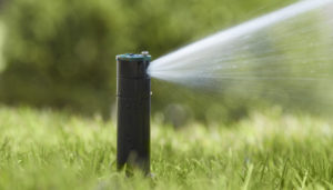 Why New Entrepreneurs Need To Invest on Sprinkler Systems