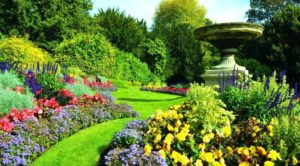6 Essential Tips to Follow for the Garden Maintenance