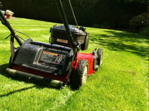 How To Use A Lawn Cutter?