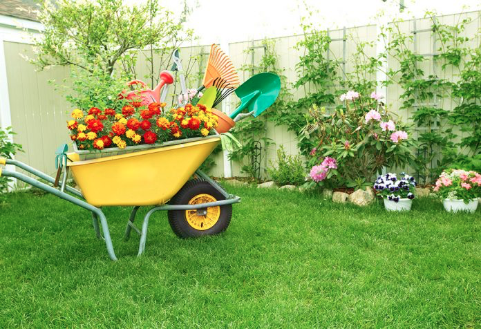 Top 10 Tips To Stay Fit By Home Gardening Milky Homes