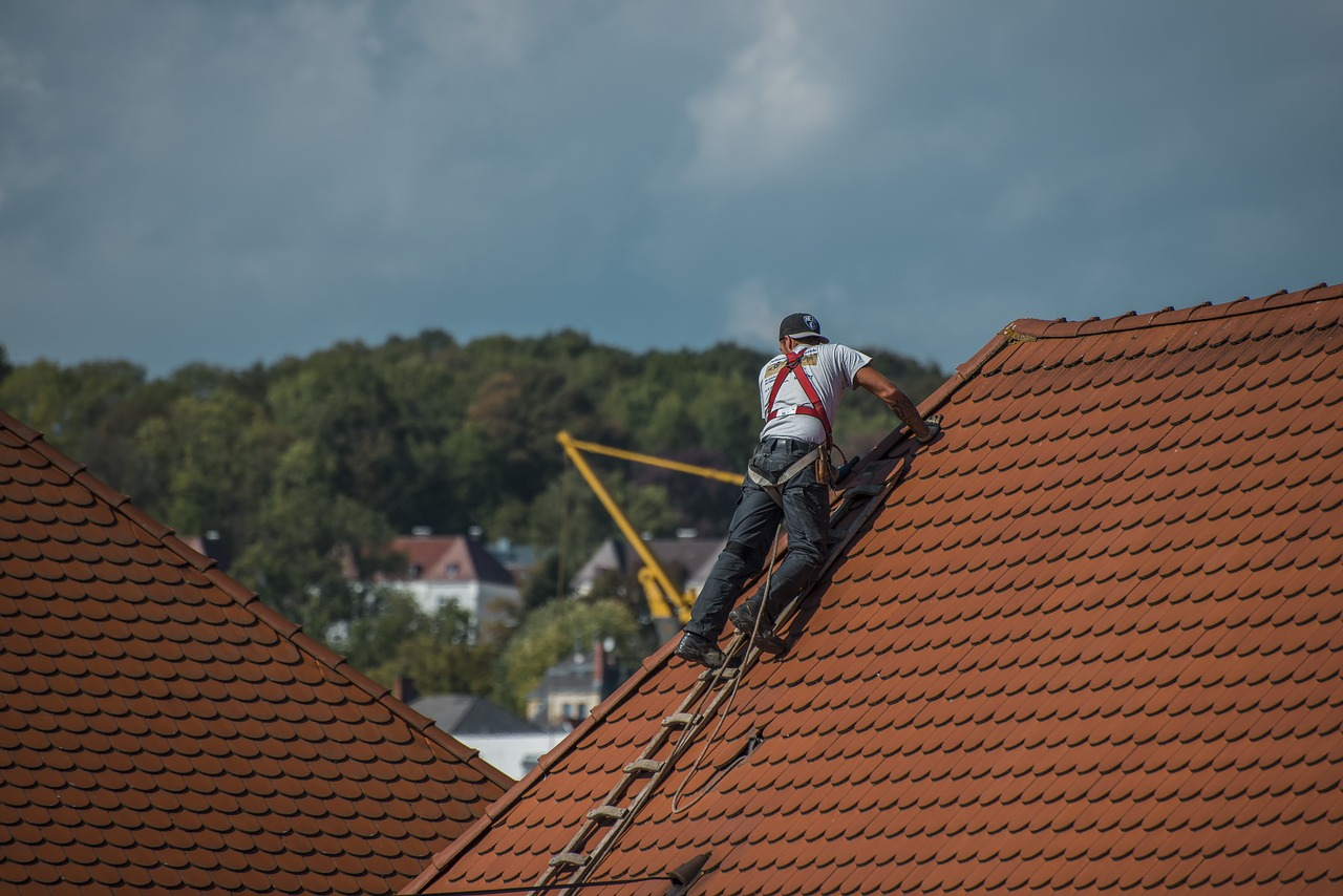 7 Roof Maintenance Tips You Need To Know