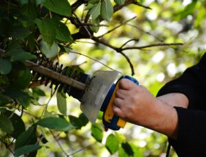4 Little Tricks to Achieve the Best Results in String Trimmer